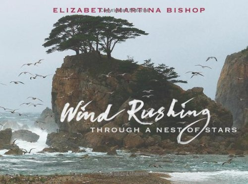 Wind Rushing